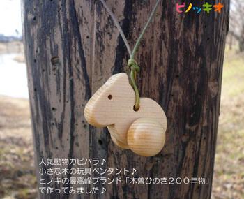 kapi-kiso01.jpg